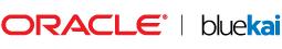 Oracle Data Cloud (BlueKai)